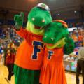 Florida Gators Albert and Alberta