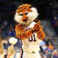 Auburn Tigers Aubie