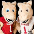 Oklahoma Sooners Boomer and Sooner
