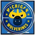Michigan 2016 Button
