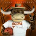 Texas Longhorns Hook'Em Boom AJ1 2018