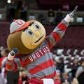 Ohio State Buckeyes Brutus