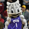 TCU SuperFrog