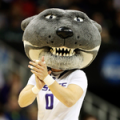 Kansas State Willie Wildcat