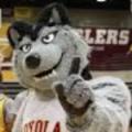 Loyola Chicago LU Wolf court